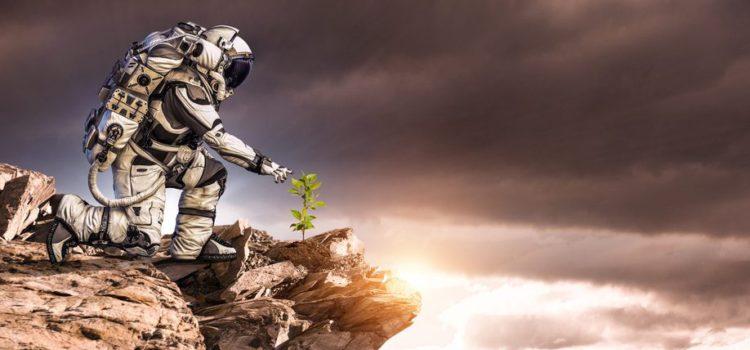 Виноград на Марсе — вклад Грузии в освоение космоса